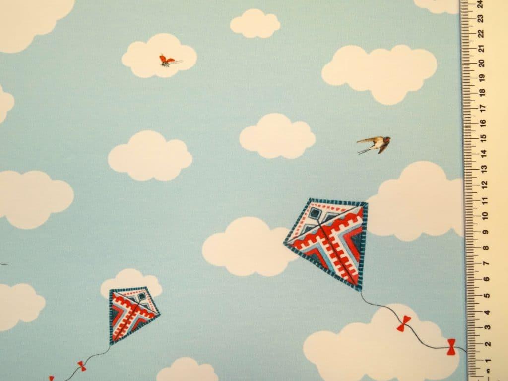 Pääsukesed ja tuulelohed sinitaevas, French Terry