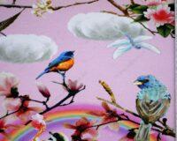 Trikotaažkangas vikerkaared ja linnud, Single Jersey