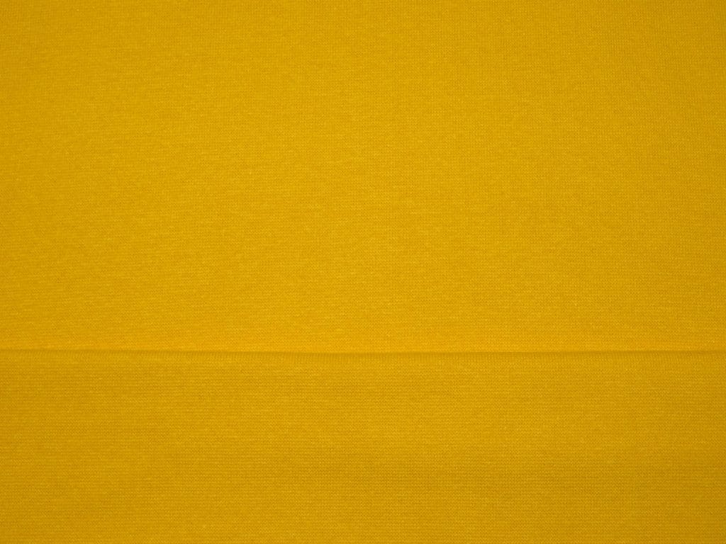 (Tuhm)kollane soonik, laius ca 0,40(X2)m