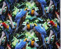 Papagoid, Single Jersey