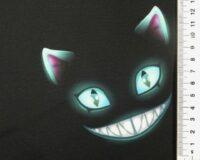 Softshell, naervad kassinäod mustal