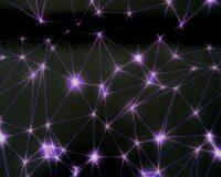 Softshell, lilla võrgustik