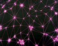 Softshell, tumedam fuksiaroosa võrgustik