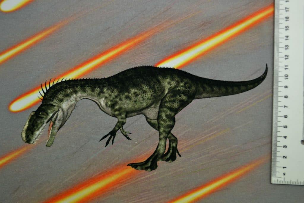 Dinosaurus 6, kupong/paneel ca 40X51cm, Single Jersey