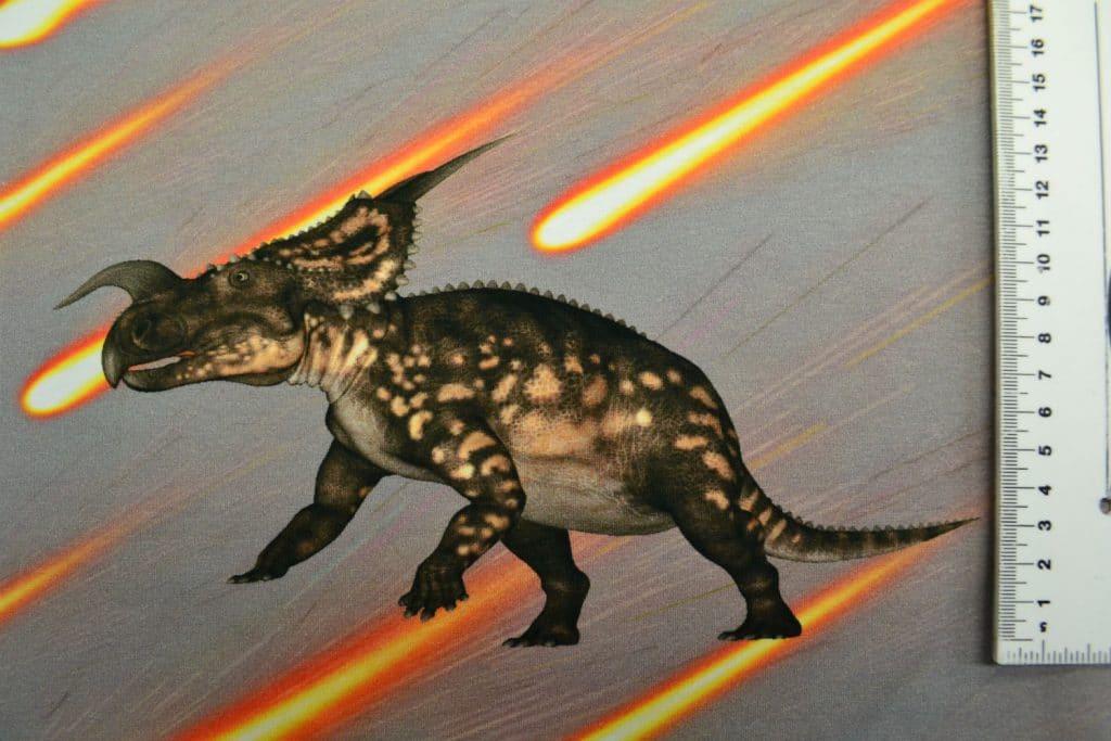 Dinosaurus 7, kupong/paneel ca 40X51cm, Single Jersey