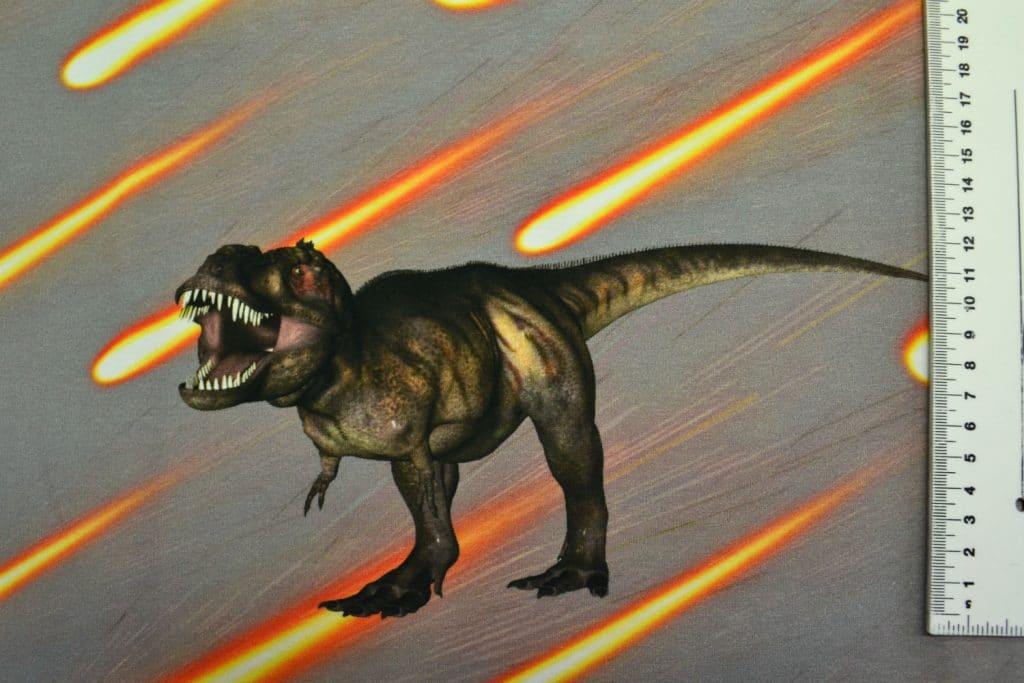 Dinosaurus 8, kupong/paneel ca 40X51cm, Single Jersey