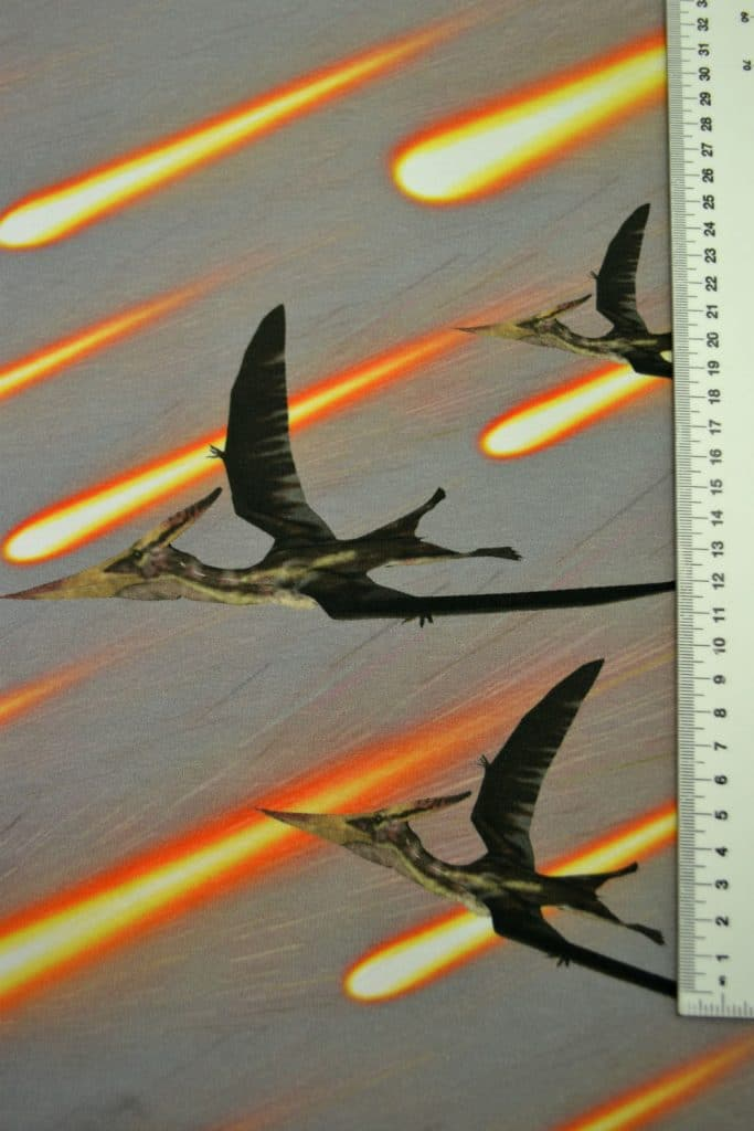 Dinosaurus 1, kupong/paneel ca 40X51cm, Single Jersey