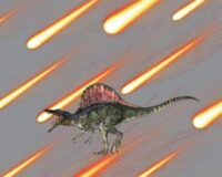 Dinosaurus 4, kupong/paneel ca 40X51cm, Single Jersey