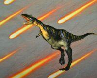 Dinosaurus 5, kupong/paneel ca 40X51cm, Single Jersey