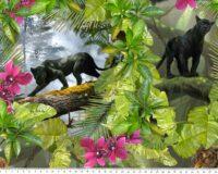Mustad pantrid ja orhideed, Single Jersey