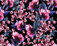 Roosad lilled mustal, Single Jersey
