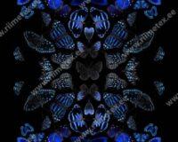 Sinised liblikad, paneel, õhem dressikangas /French Terry/