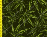 Seamless cannabis pattern in green colour. Vector illustration