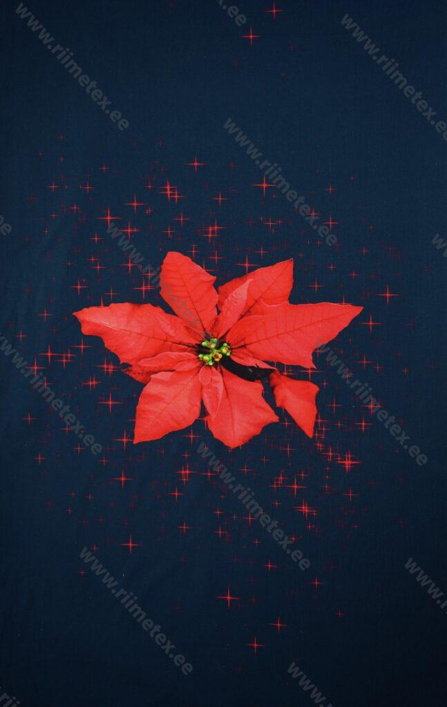 Jõulutäht (suur), paneel, õhem dressikangas /French Terry/