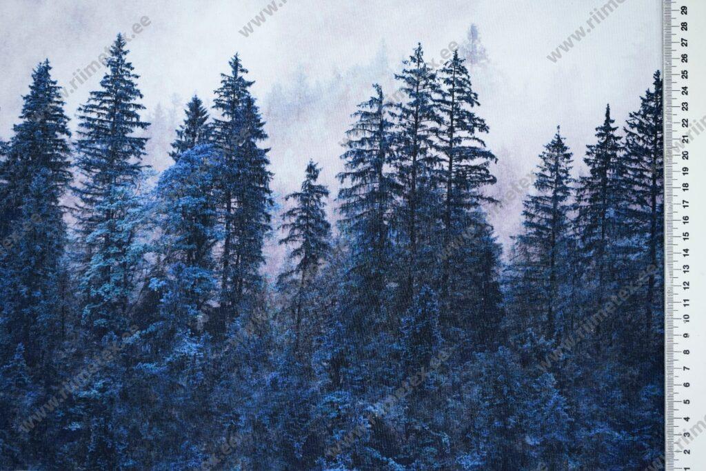 Sinine mets, mustrikordusega French Terry/dressikangas