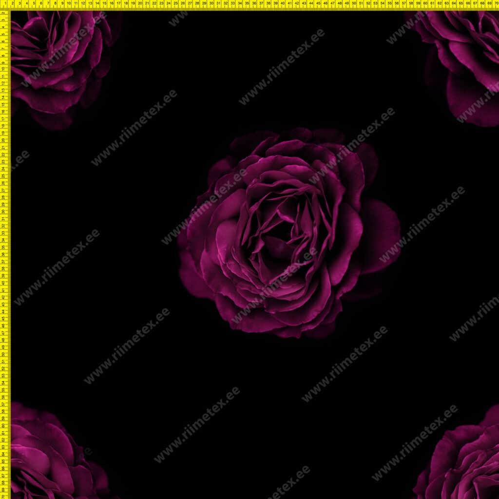Suured roosiõied mustal, õhem trikotaaž /Single Jersey/ 0,35m/tk+praagi osa