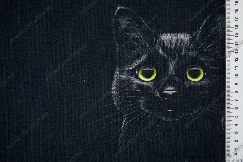 Õhuke dressikangas/ French Terry paneel must kass mustal