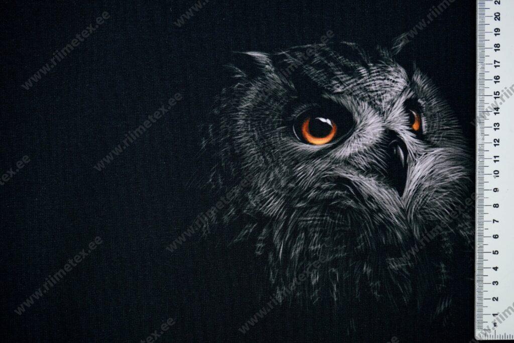 Õhuke dressikangas/ French Terry paneel öökull mustal
