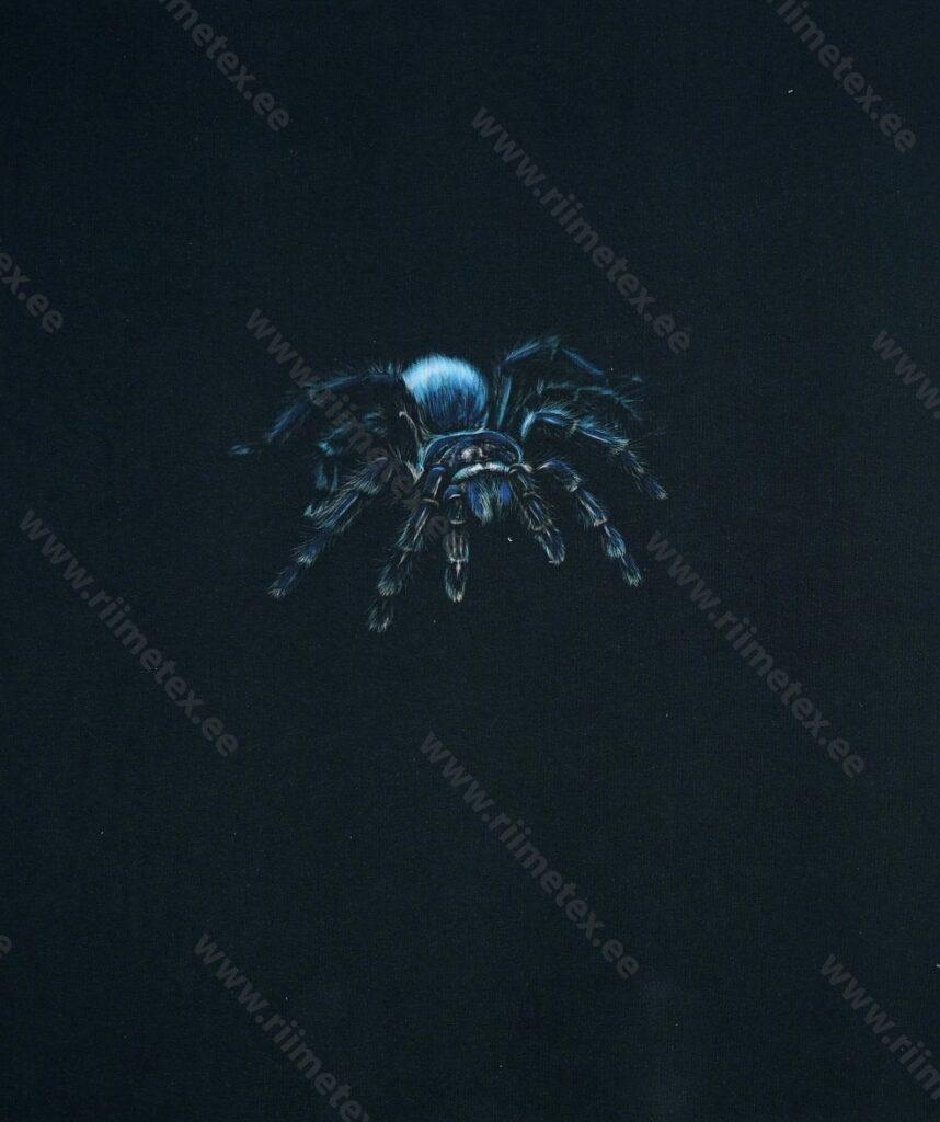 Õhuke dressikangas/ French Terry paneel sinine tarantel mustal