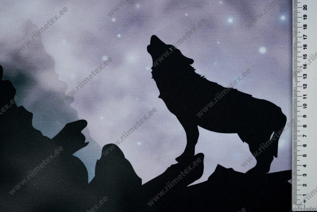 Õhuke dressikangas/ French Terry paneel ulguv hunt, tume