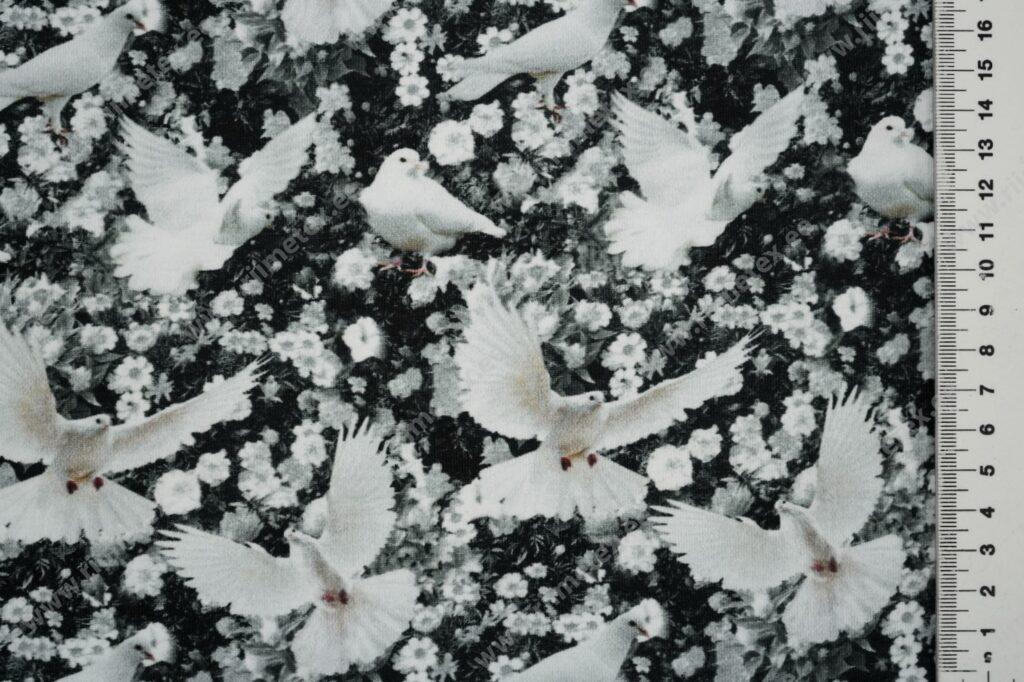 Trikotaažkangas väiksed valged tuvid, Single Jersey