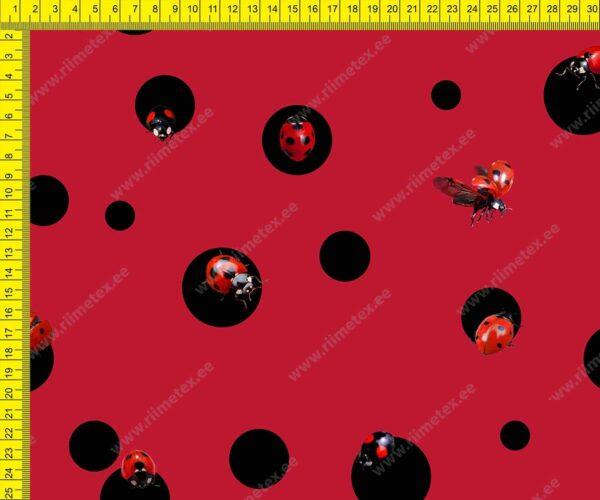 kangas lepatriinud punasel