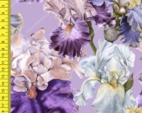 Background with iris. Seamless pattern. Watercolor illustration