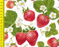 Õhuke veekindel jopekangas maasikad valgel (softshell-mesh)