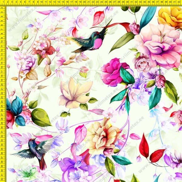 Softshell magnooliad ja linnud