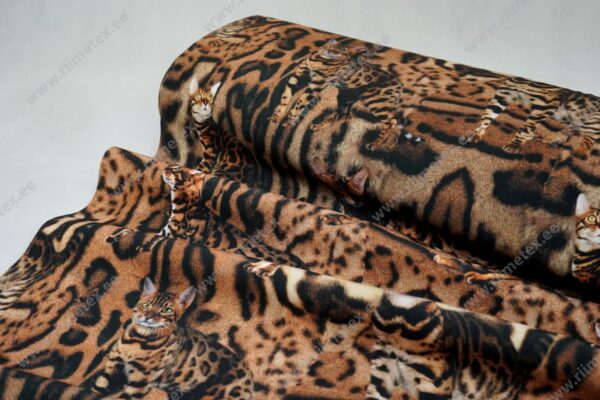 Softshell kassid loomamustril